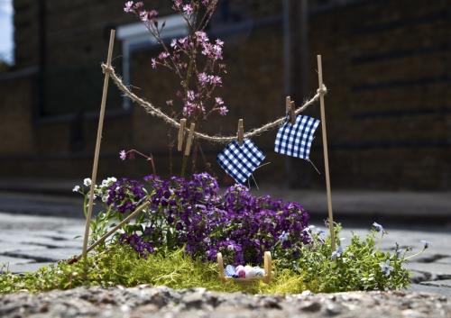 pothole garden clothes line steve wheen