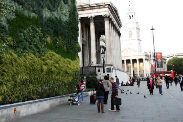 Living Wall Trafalgar Square London National Gallery