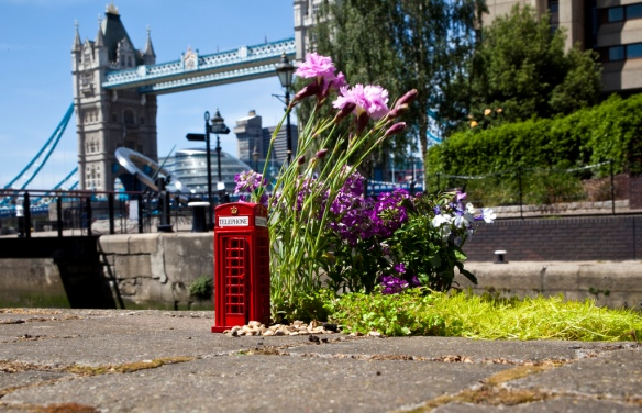 pothole garden tower bridge london phone box