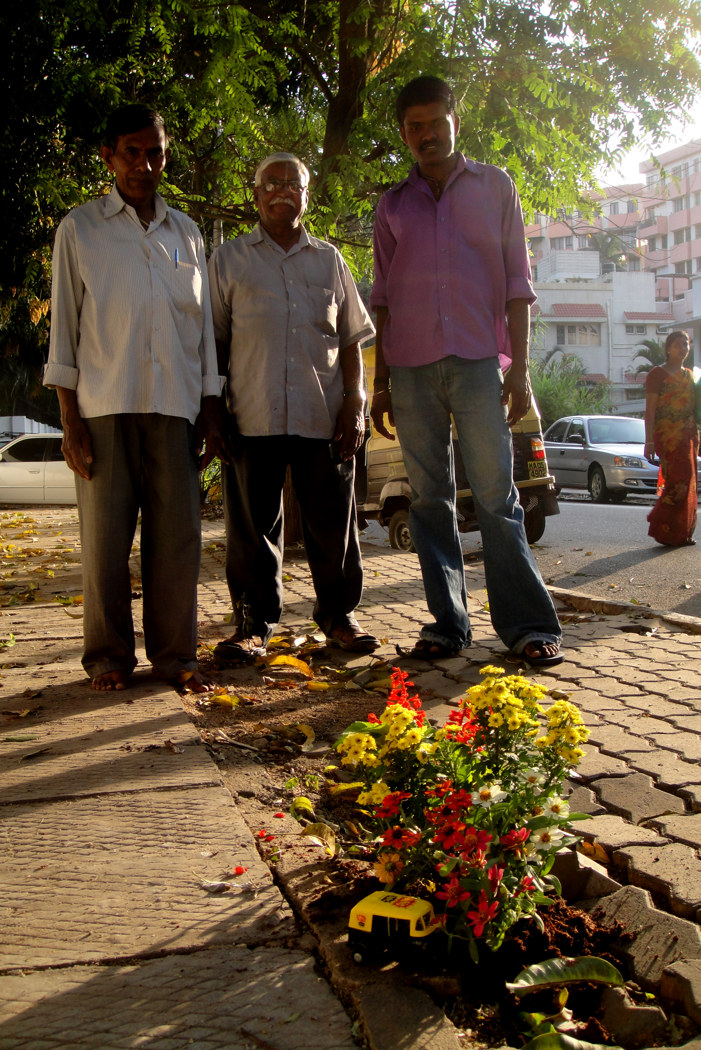 Gardening in India | the pothole gardener
