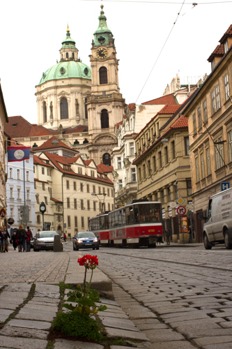 Prague-Pothole-Garden-wide