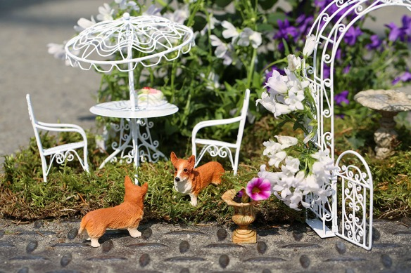 Going a tiny bit potty about gardens. London's potholes transform into mini summer showcases during Chelsea Fringe this year